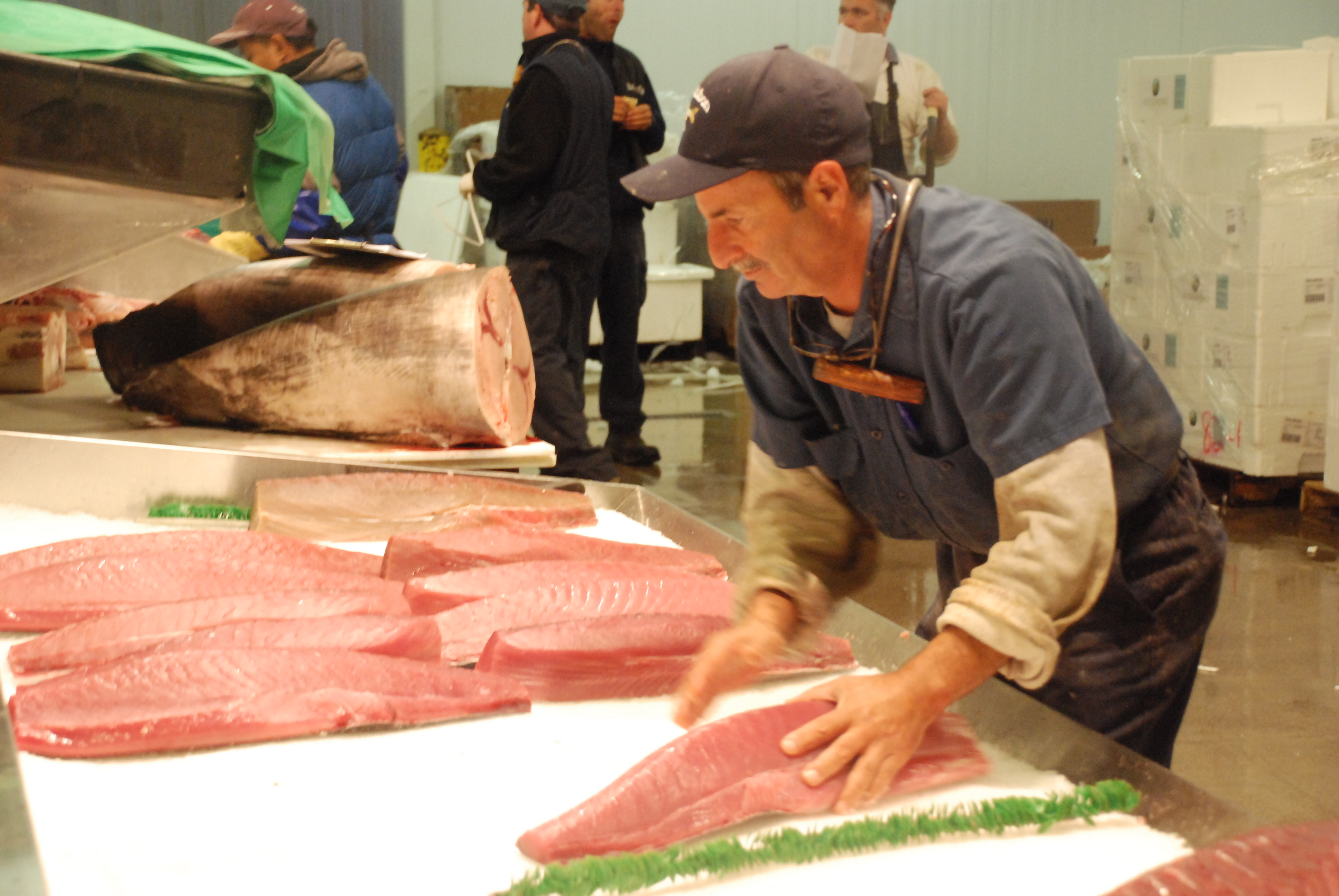 Images ted regencia reports for New fulton fish market