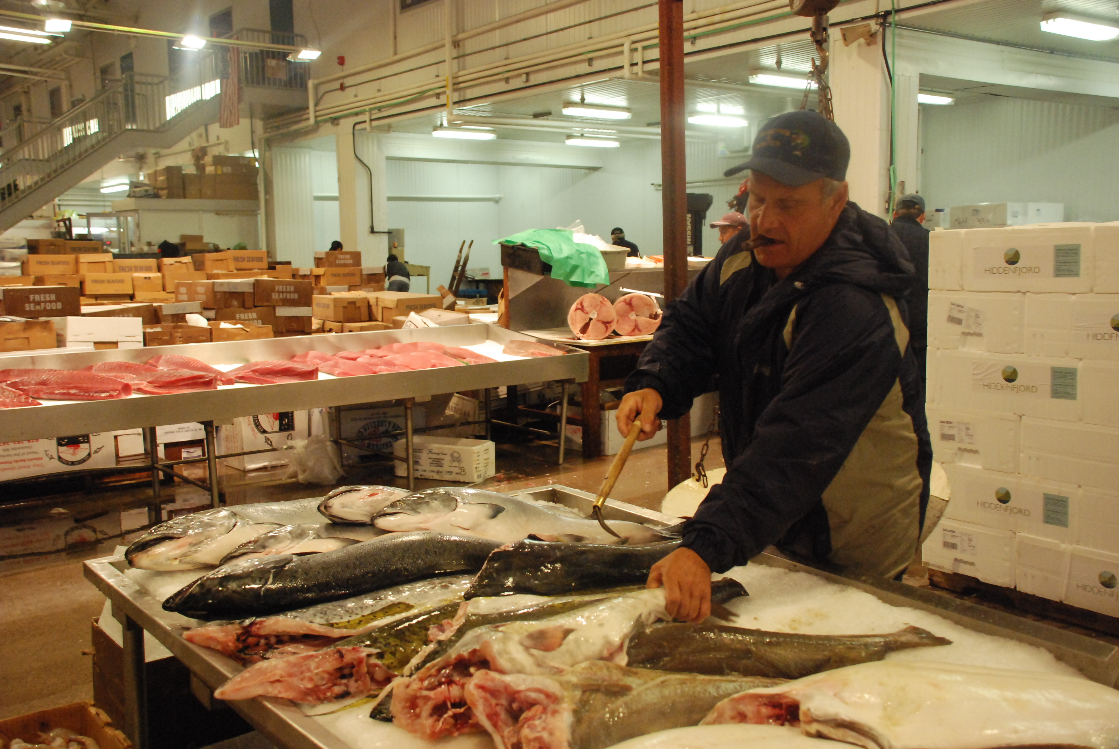 Business ted regencia reports for Fish market bronx