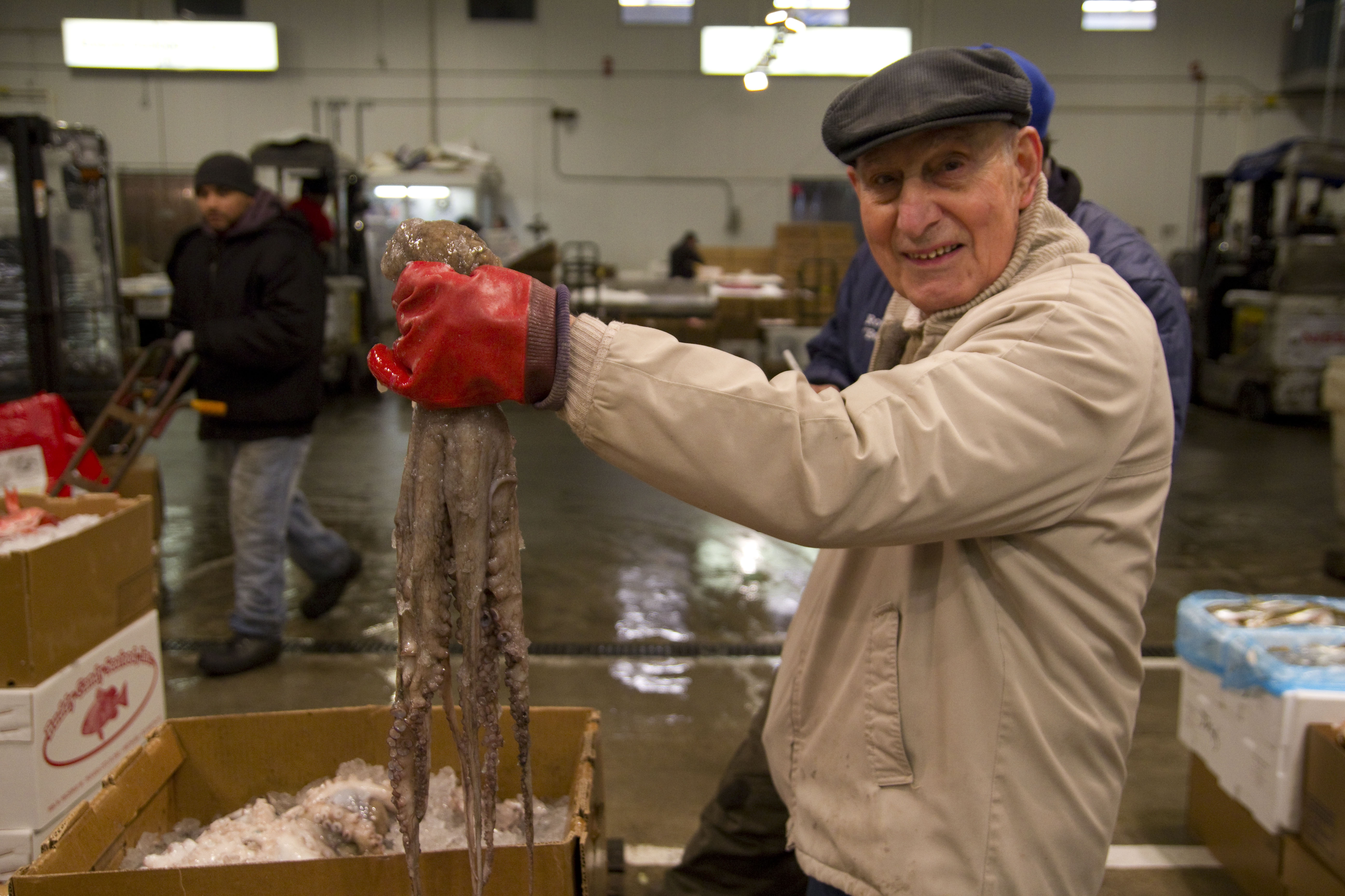 Images ted regencia reports for Fulton fish market online